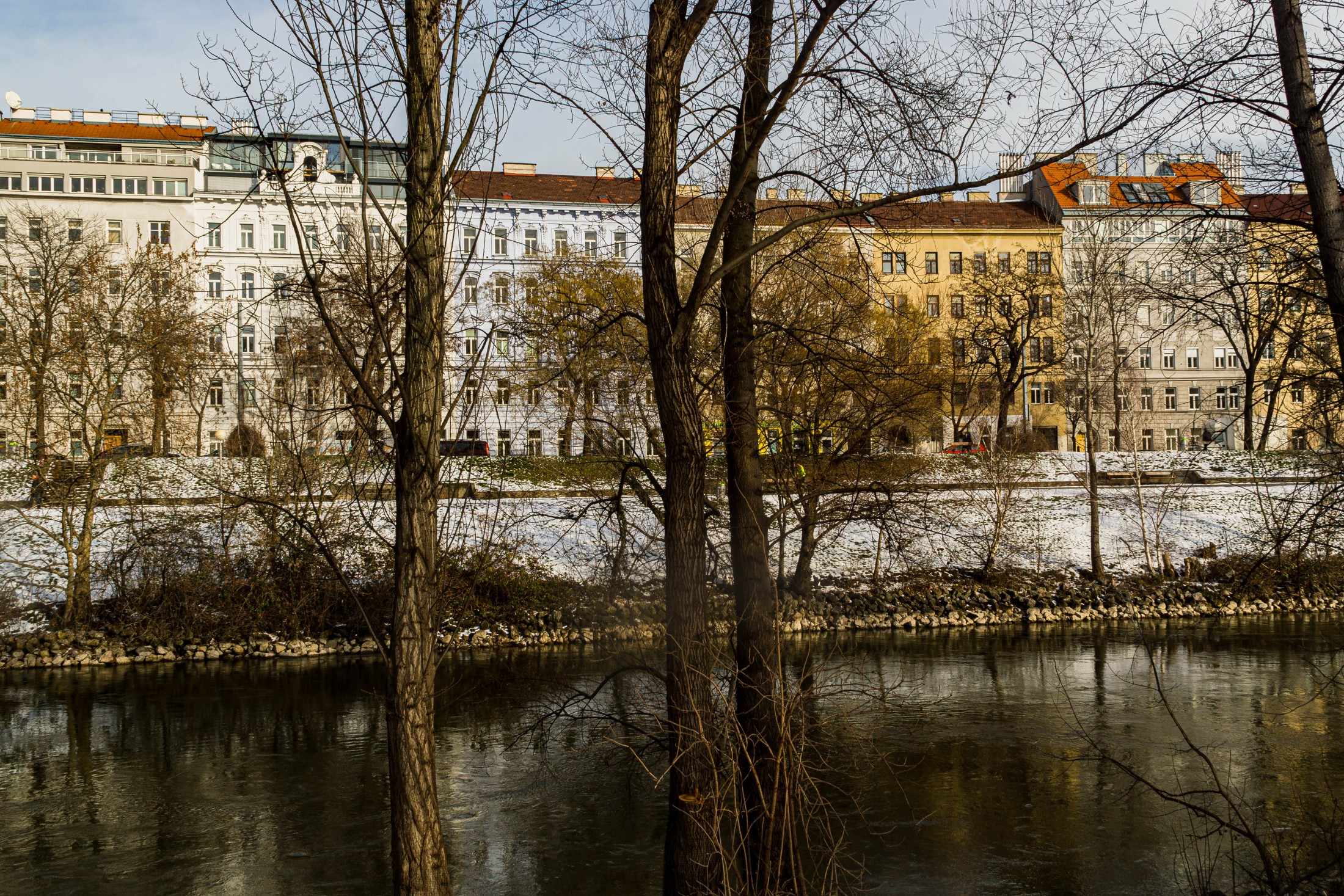 Flowing Inspiration - Danube river in Vienna